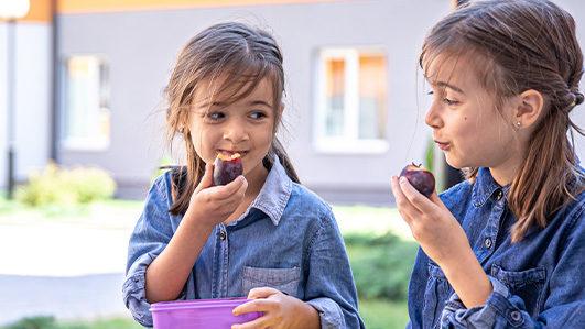 Alimentação Saudável nas Escolas